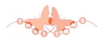 TMES TMMS logo