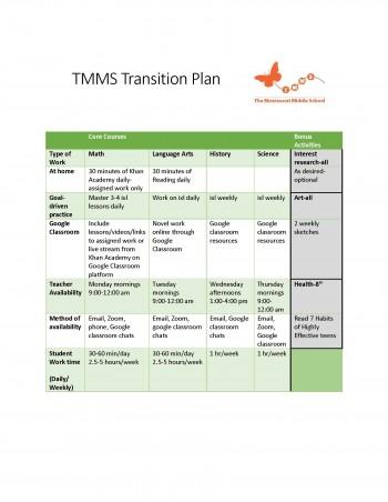 transition plan image